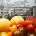 fruit-and-berlin